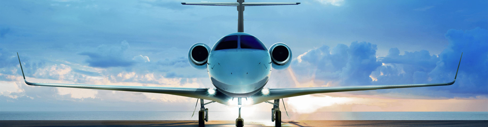 Experience the luxury of a business jet in Los Angeles, Ca